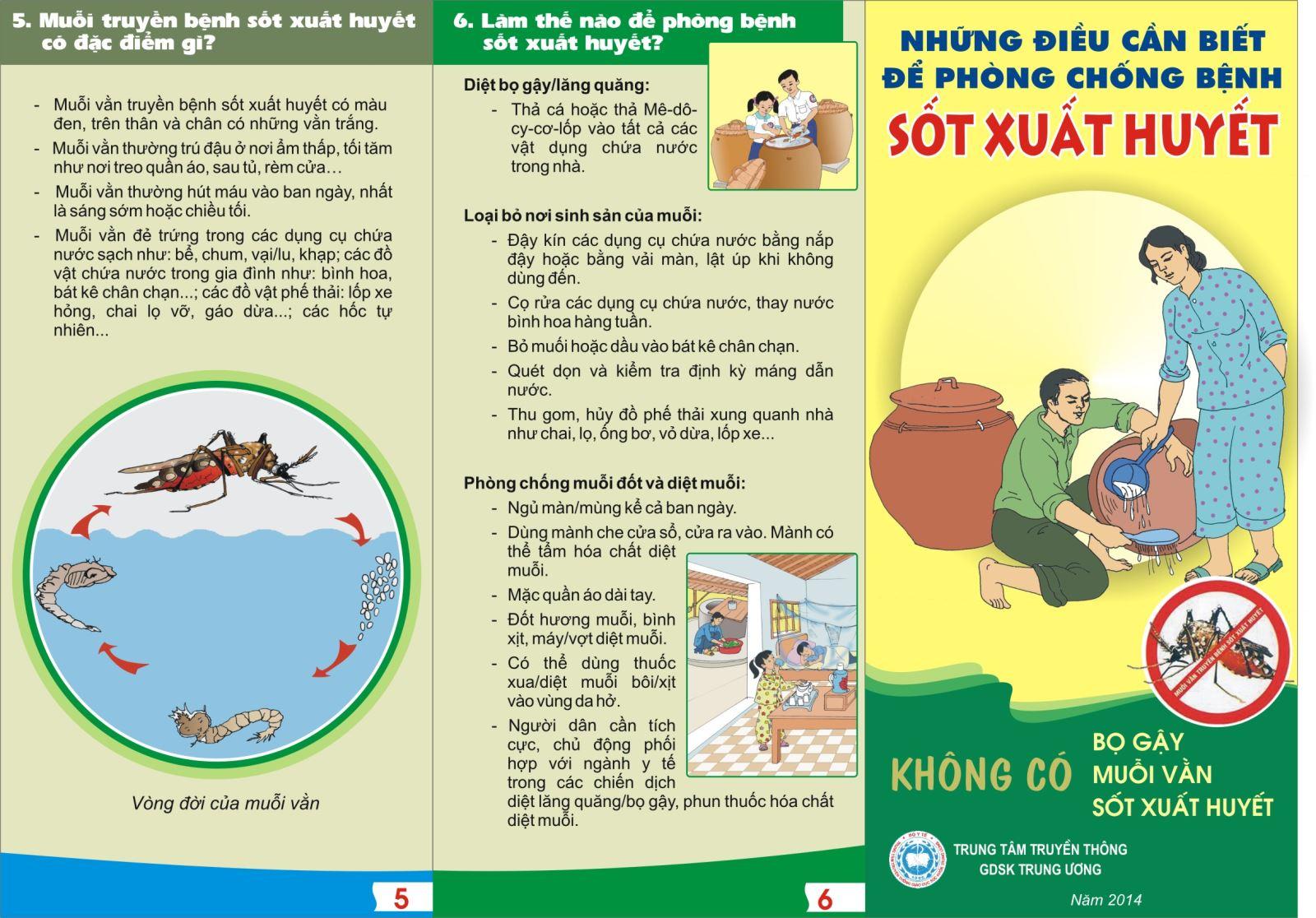 Những điều cần biết để phòng chống bệnh sốt xuất huyết)